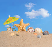 Starfish and seashells on a beach sand Stock Photo