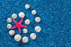 Starfish and seashells on blue background Stock Photo