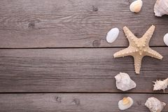 Starfish and seashells on a grey wooden background. Summer concept royalty free stock image