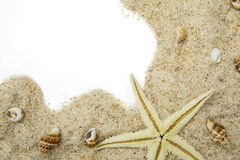 Starfish and seashells on the sand Royalty Free Stock Photo