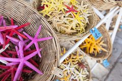Starfish and seashells souvenirs for sale Royalty Free Stock Photo