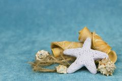 Starfish and seashells royalty free stock photos