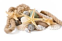 Starfish, seashells and stones Stock Images