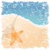 Starfish by the seaside Stock Images