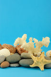 Starfish and set of objects of the sea underwater Stock Photo