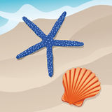 Starfish and shell Stock Photos