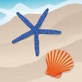Starfish and shell Stock Photos