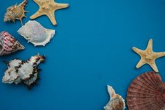 Starfish, Shell, Stones, Rope and Net Against a Blue Background with Copy Space. Summer Holliday. Nautical, Marrine concept. Starfish, Shell, Stones, Rope and royalty free stock photos