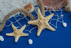 Starfish, Shell, Stones, Rope and Net Against a Blue Background with Copy Space. Summer Holliday. Nautical, Marrine concept. Starfish, Shell, Stones, Rope and stock photography