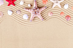 Starfish and shells on the beach. Summer vacation. stock image