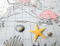 Starfish and shells on pacific map Royalty Free Stock Images