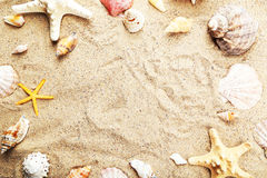 Starfish and shells on sand beach Stock Images