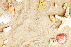 Starfish and shells on a sand beach Stock Images