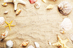Starfish and shells on a sand beach, close up Royalty Free Stock Photos