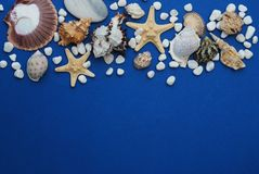 Starfish with Shells and stones Against a Blue Background with Copy Space. Summer Holliday. Nautical, Marrine concept. Starfish with Shells and stones Against a stock images