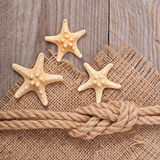 Starfish and ship rope Royalty Free Stock Photography