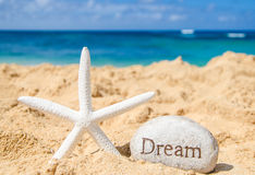 Starfish with sign Stock Photography