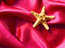 Starfish on silk fabric Royalty Free Stock Photos