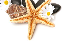 Starfish and spa objects Stock Photos
