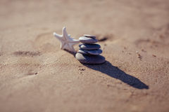 Starfish and stack of pebbles at the beach Stock Photo