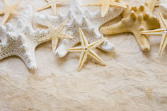 Starfish on stained paper Stock Photo