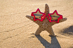 Starfish Star Stock Images