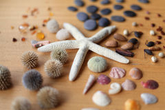 Starfish and stones- decoration Royalty Free Stock Images