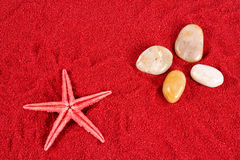 Starfish and stones on the red sand Stock Photos