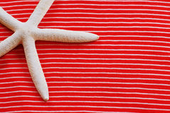 Starfish and Stripes Royalty Free Stock Photography