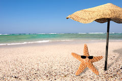 Starfish and summer Stock Images