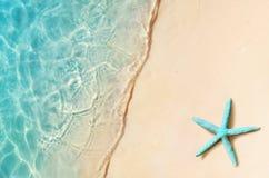 Starfish on the summer beach. Summer background. Tropical sand beach royalty free stock photos