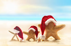 Starfish on summer beach and Santa hat Stock Images