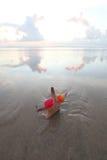 Starfish on summer beach Stock Image