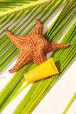 Starfish and sun tan tube on palm leaf Royalty Free Stock Images