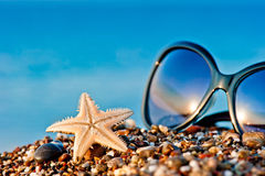 Starfish and sunglasses on the beach against the sea Stock Image