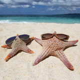 Starfish with sunglasses on beach Royalty Free Stock Photos