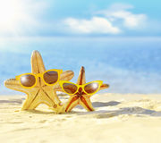 Starfish in sunglasses on the seashore. Beach. Royalty Free Stock Image