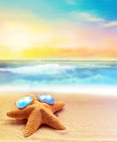 Starfish in sunglasses on the summer beach Royalty Free Stock Photo