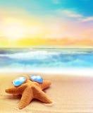 Starfish in sunglasses on the summer beach Royalty Free Stock Photo