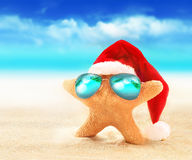 Starfish in sunglasses on summer beach and santa hat. Stock Image
