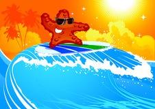 starfish surf Arkivfoto