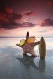 Starfish surfer on the beach Royalty Free Stock Photos