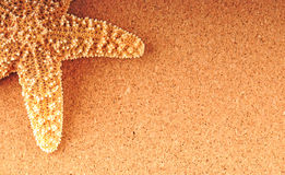 Starfish on tan background Royalty Free Stock Images