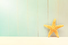 Starfish on a teal wooden background Royalty Free Stock Image