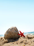 Starfish on tropical beach Royalty Free Stock Images