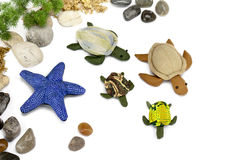 Starfish, turtle doll made of cloth. Royalty Free Stock Image