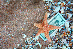Starfish on twenty dollars over film of seashells and copyspace on sand Royalty Free Stock Images