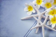 Starfish und Plumeria-Blumen lizenzfreie stockfotografie