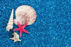 Starfish und schöne Nahaufnahme der Muscheln auf blauem Hintergrund Stockfotografie