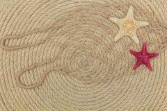 Starfish- und Seenetz liegen auf dem Hintergrund, der vom Seil gemacht wird Stockfoto
